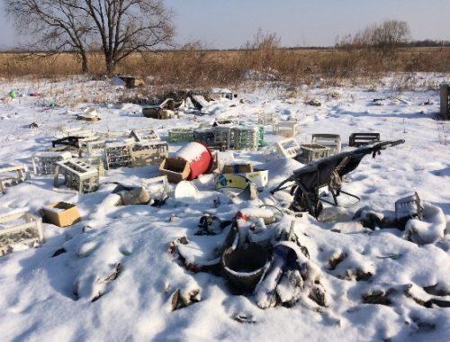 Россельхознадзор обнаружил несанкционированную свалку в Октябрьском районе