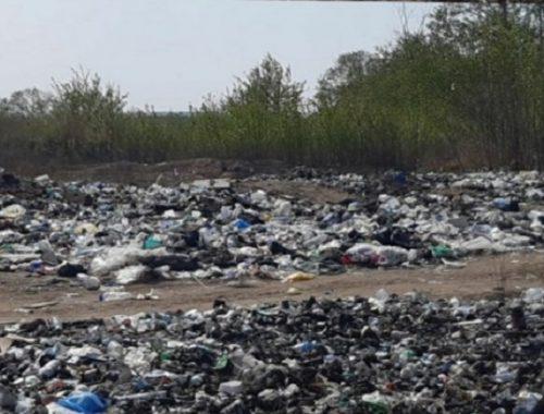 Берег Амура зарос мусором в Ленинском районе