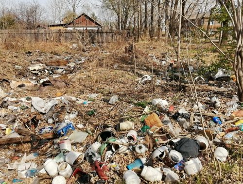 Биробиджан «утонул» в мусоре