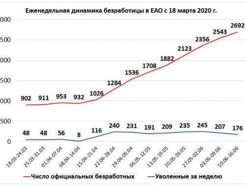 Почти 3,5% достигла «армия безработных» в ЕАО (ИНФОГРАФИКА)