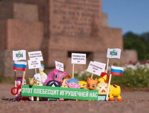 В Санкт-Петербурге силовики пришли к активистке после «игрушечного» митинга