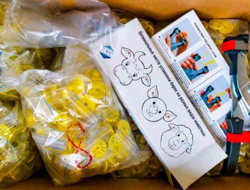 В Биробиджан поступила партия клипс для чипирования домашних животных