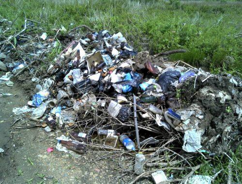 Несанкционированные свалки обнаружили в Смидовичском районе