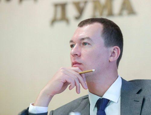 Михаил Дегтярёв и «голубиные протесты»