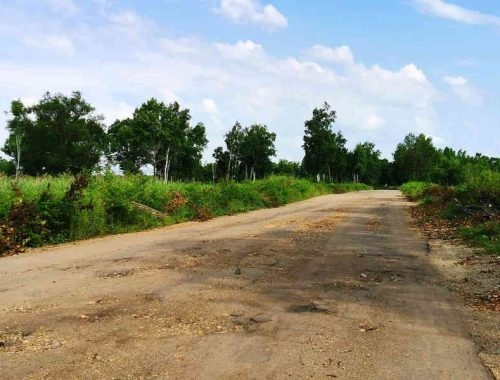 Добиваться ремонта автодороги Амурзет – Биробиджан прокуратура будет через суд
