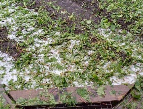 В Теплоозерске заработали комиссии по оценке ущерба от обрушившегося града
