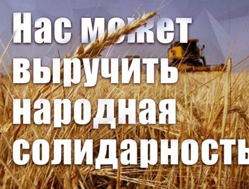 Трудовому коллективу Совхоза имени Ленина требуется народная поддержка