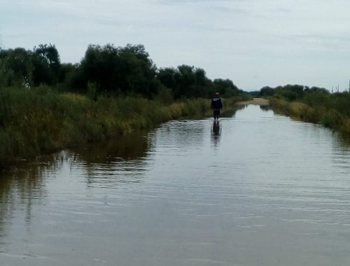 В Ленинском районе затопило дорогу между Квашнино и Дежнево