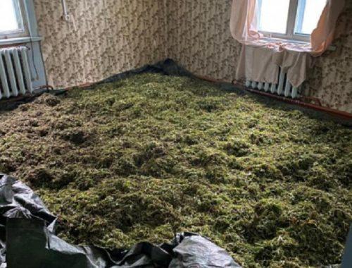 60 килограммов марихуаны хранил хабаровчанин в заброшенном доме в с. Степное
