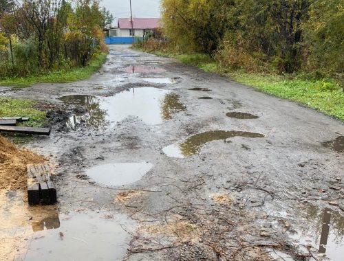 «Ударить кадром» по бездорожью в поселке Смидович решили общественные активисты (ВИДЕО)