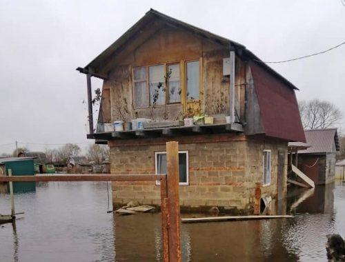 Правительство ЕАО отмахнулось от сотен подтопленцев в Смидовичском районе