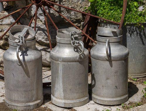 У крестьян Октябрьского и Ленинского района ЕАО перестали покупать молоко