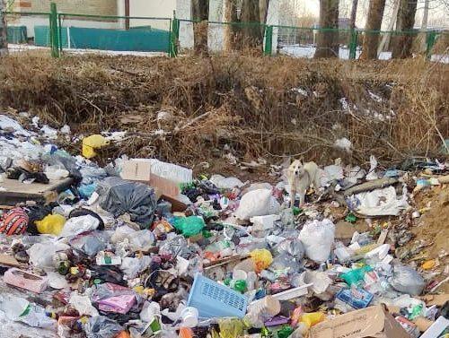 «Так жить нельзя»: жители села Песчаного пожаловались на разруху губернатору ЕАО
