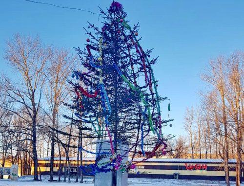В центре Теплоозерска установили «позорную» елку