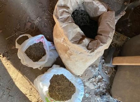 Четыре килограмма конопли и два ружья изъяли полицейские у жителя с. Петровка в ЕАО