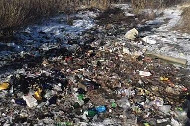 Жители Смидовича сняли очередной видеоролик о помойках посёлка
