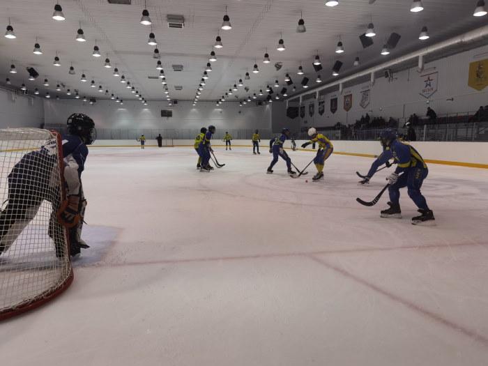 Команда спортивной школы олимпийского резерва ЕАО победила на Открытом первенстве ЕАО по мини-хоккею с мячом