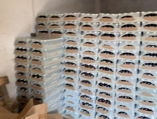 В биробиджанских магазинах изъяли 300 тысяч фунфыриков, замаскированных под бутыльки с лосьоном