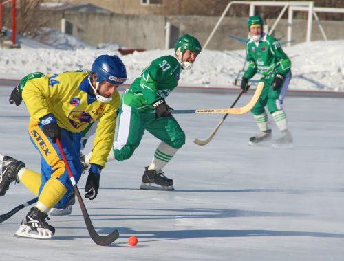 Цена «Победы». Когда большой хоккей вернется в Еврейскую автономию?