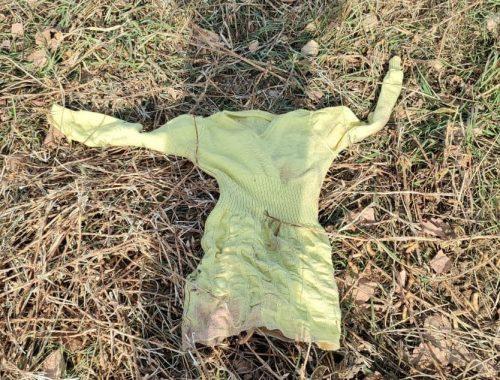 Труп новорождённого ребёнка обнаружили на окраине села Валдгейм в ЕАО — соцсети